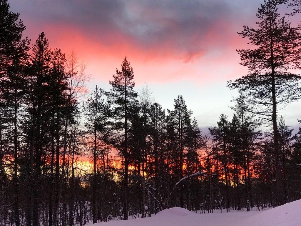 Suomen talvinen luonto